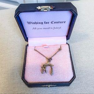 Juicy wishbone necklace
